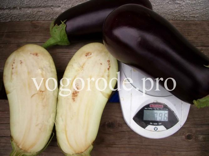 1 баклажан весит почти 0,8 кг.
