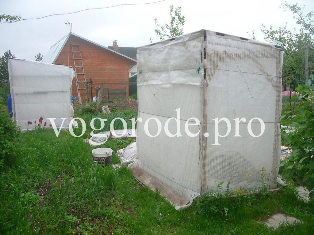 Многофункциональные укрытия для помидоров.
