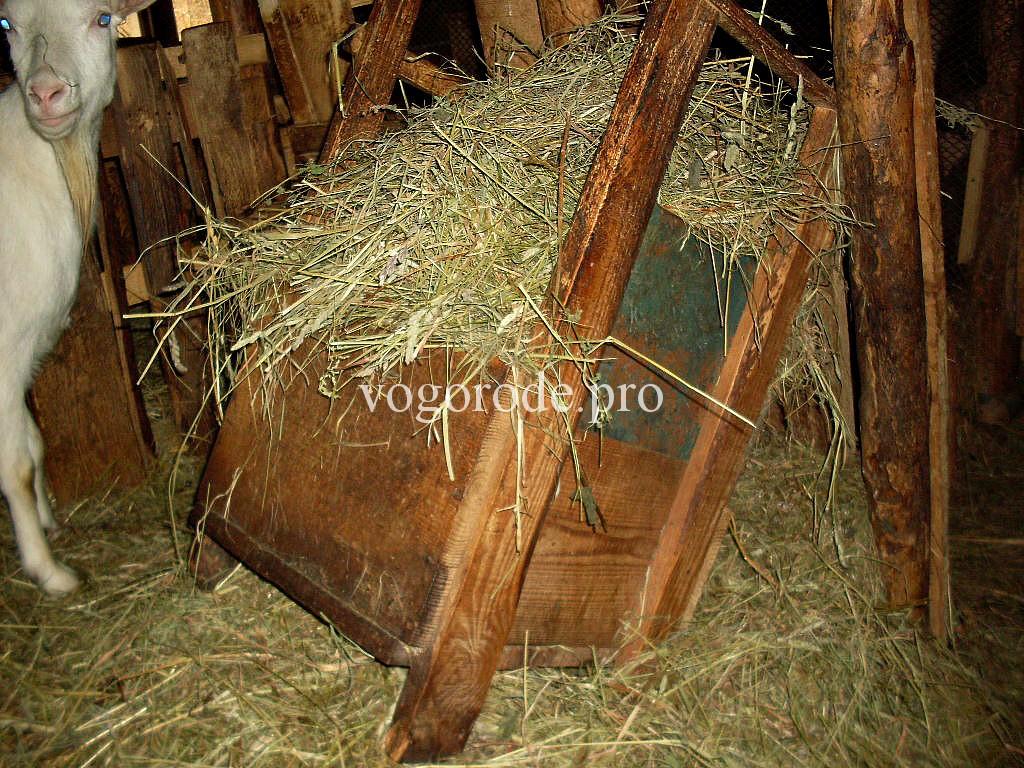 Кормушки для коз своими руками фото оригинальные идеи