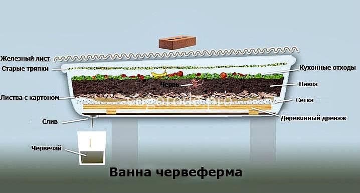 Устройство ванны для содержания червей «Старатель»