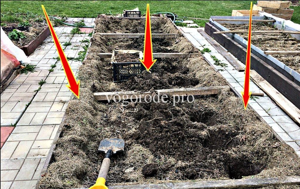 Выращивание картофеля под мульчей